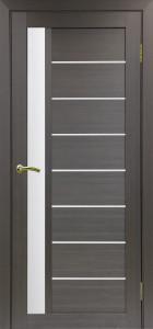 Дверь Турин 554