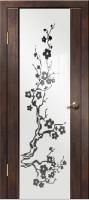 Дверь Диана Сакура Венге